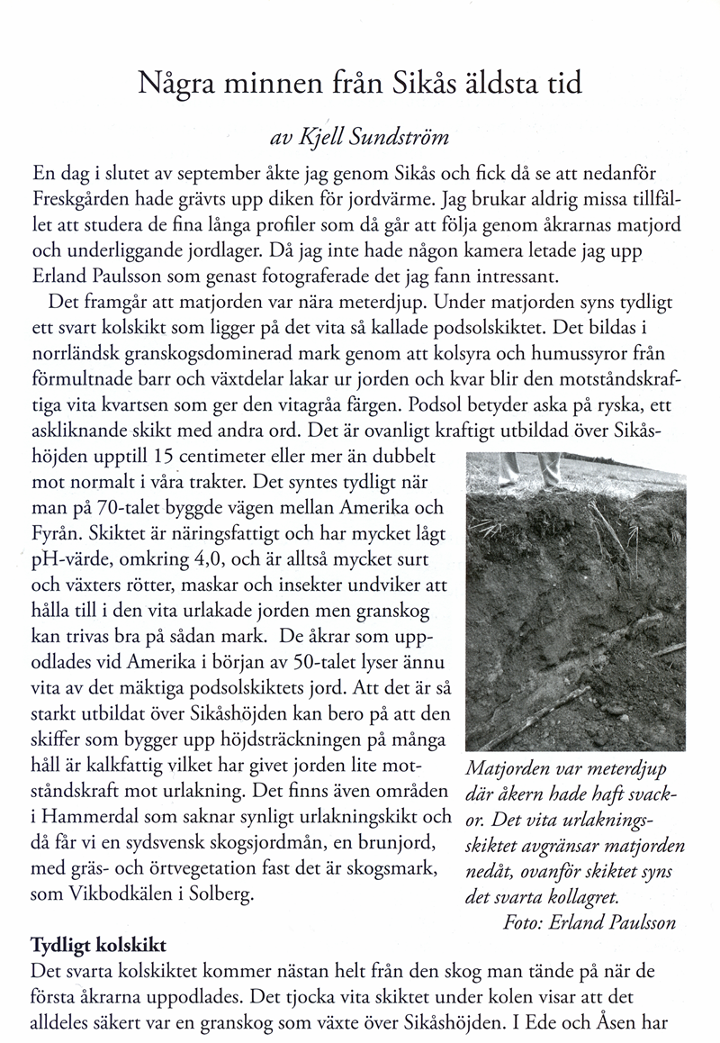 01-Fornfynd-Sikaas.jpg