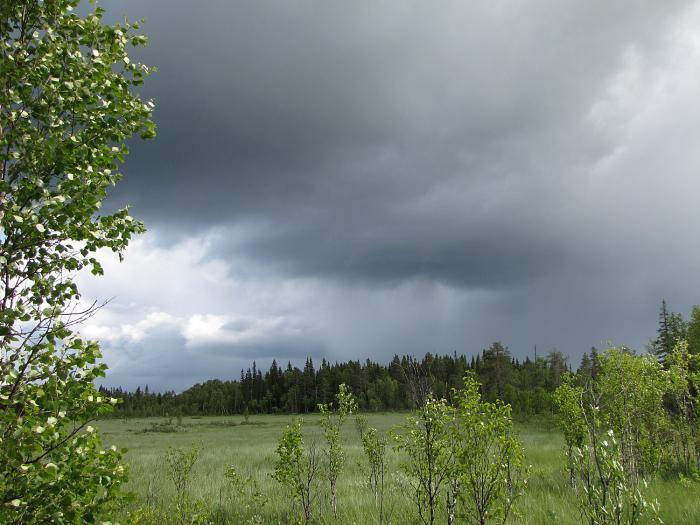 01 oväder storbäckmyra