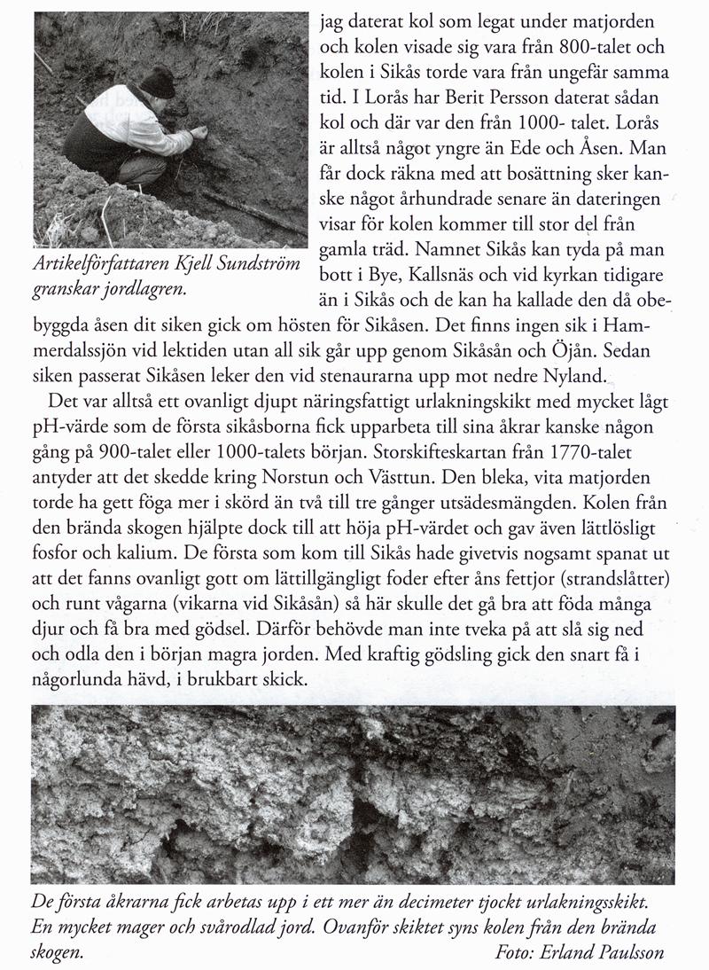 02-Fornfynd-Sikaas.jpg