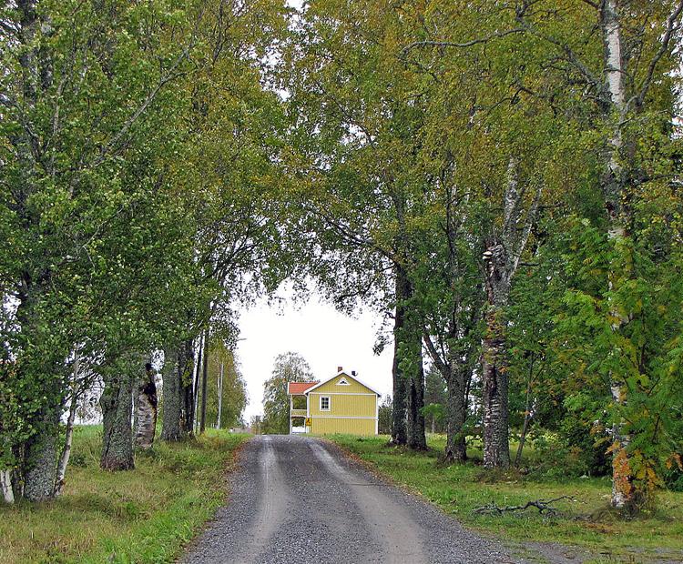 02-Mot-Kalle-2.jpg
