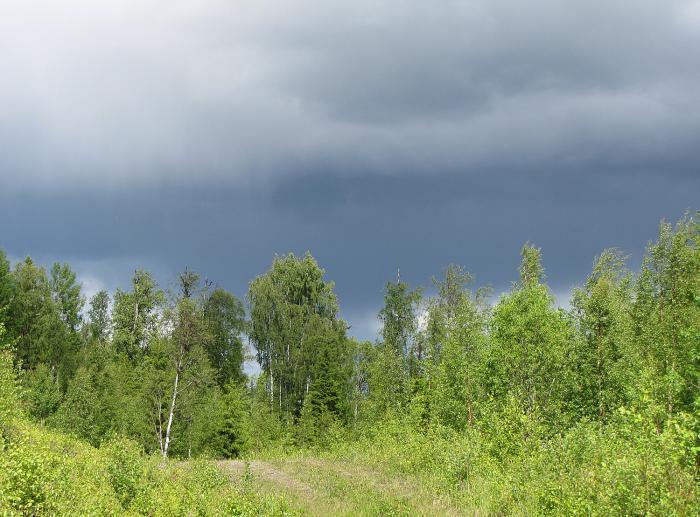 02 oväder åskälen