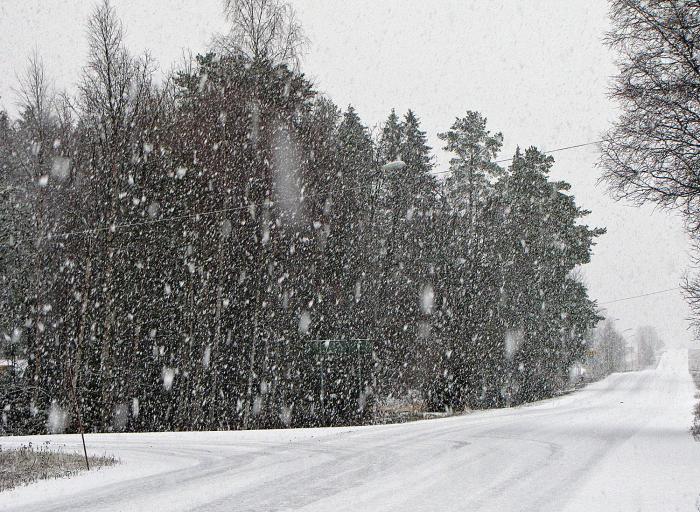 03 det snöar