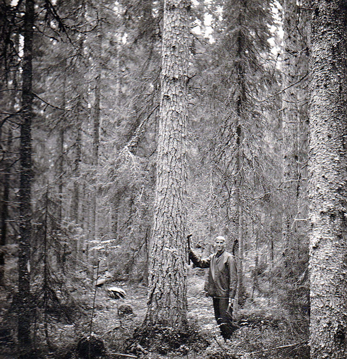16-Pappa-i-skogen-i-boerjan-av-60talet.jpg