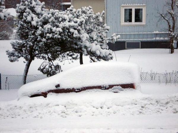 vinter hos gunliss 02